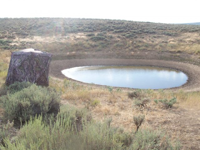 A Picture Perfect Hide a Primos ground blind set up on a desert water hole in pronghorn country